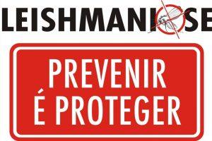 Prevenção leishmaniose canina