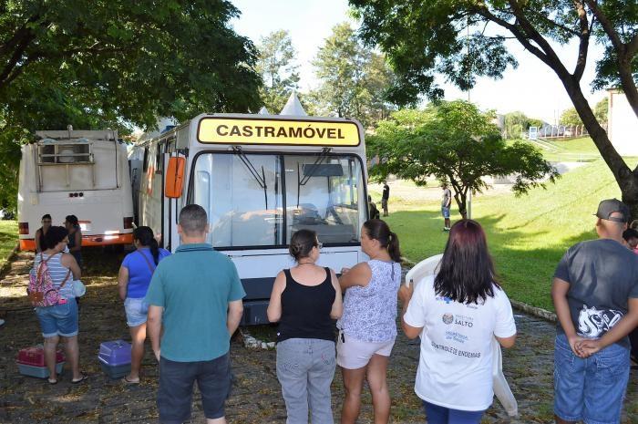 Campanha fecha o ano com 2100 castrações de cães e gatos em Salto